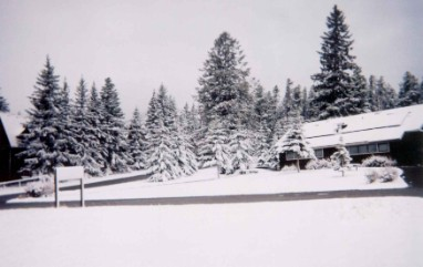 Snow at Banff RV Park